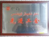 2011年先进工会奖牌